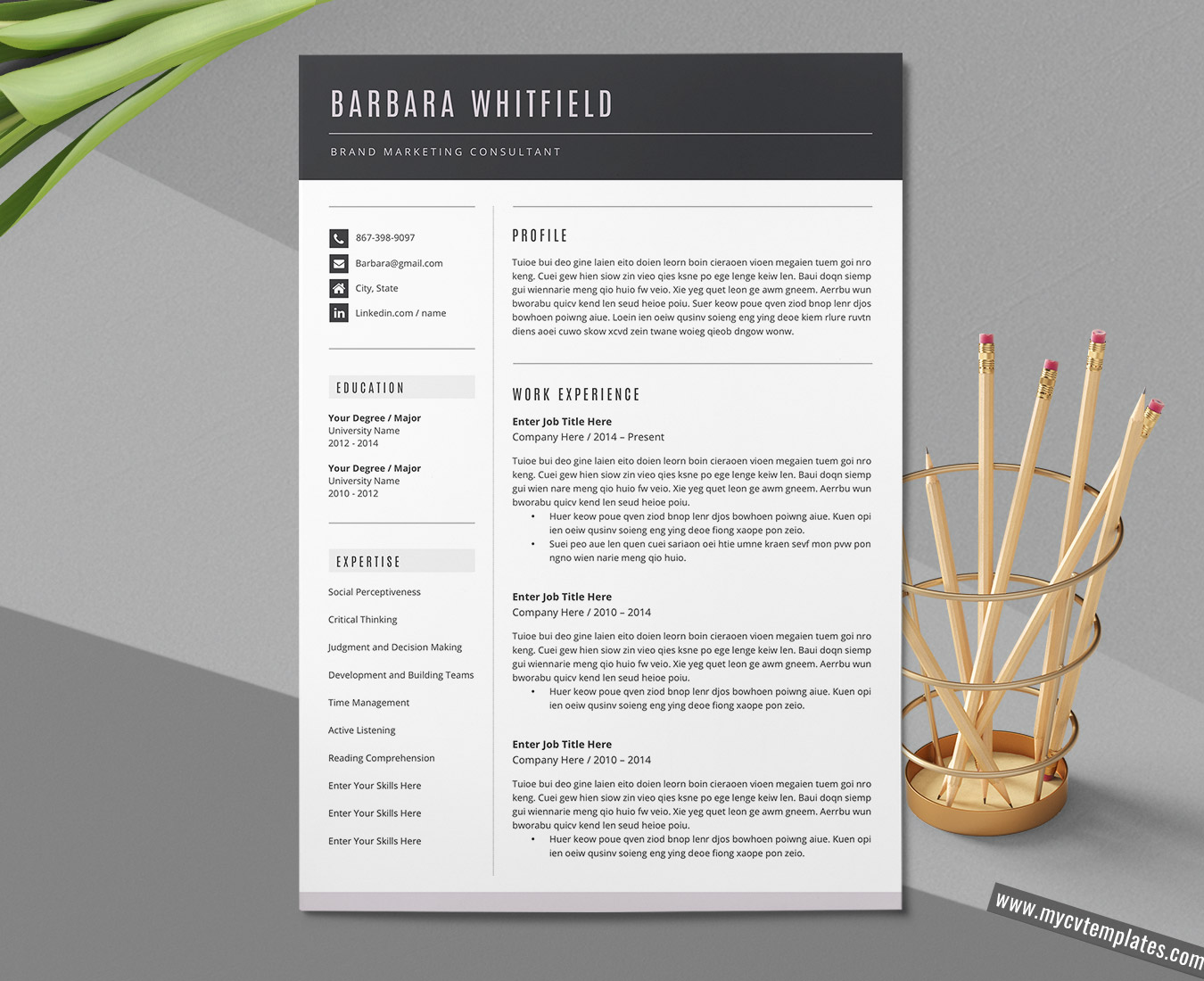 Professional resume template instant download CV template CV resume template free resume template word Resume template