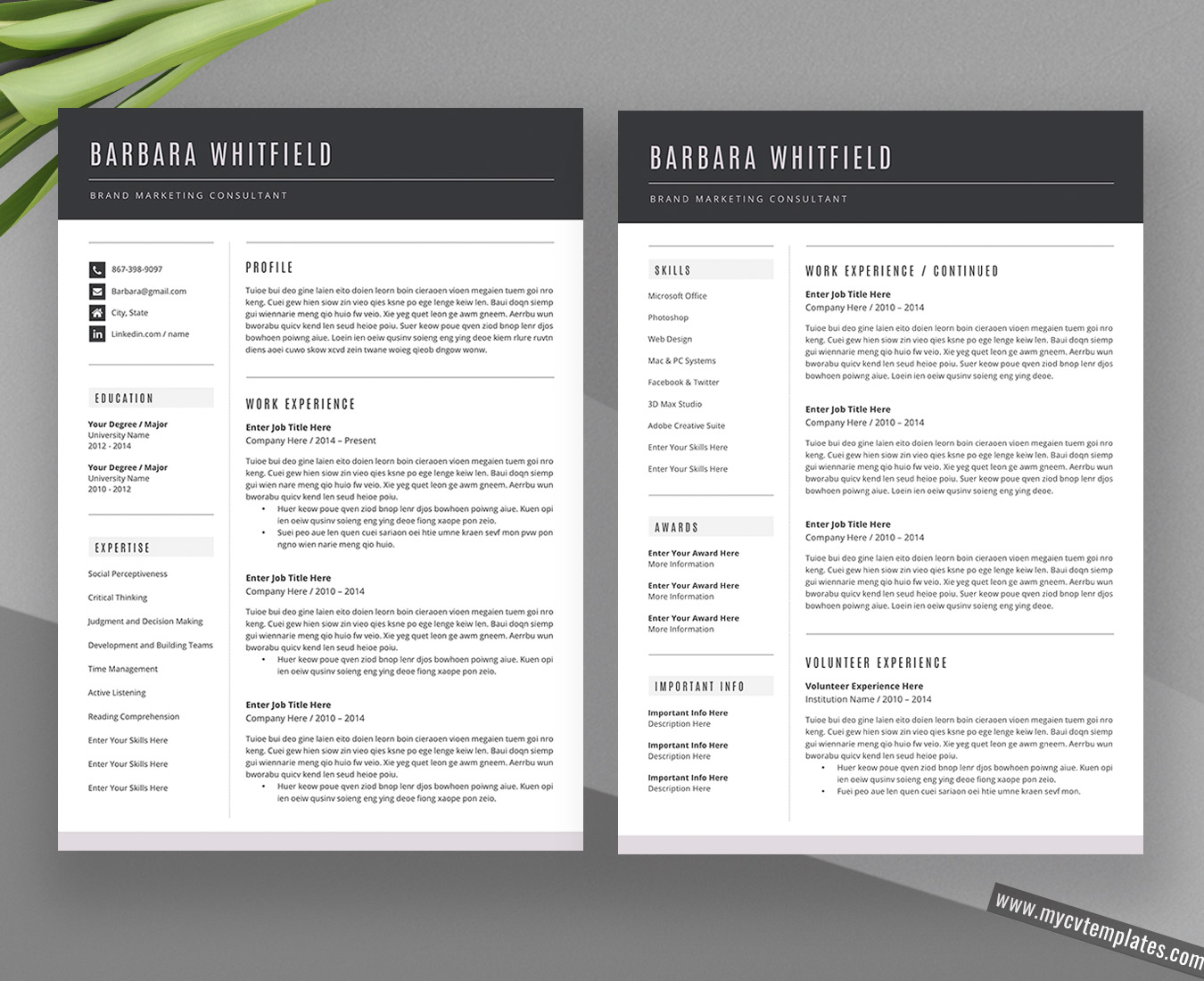 2020 Creative and Professional CV Templates and Cover ...